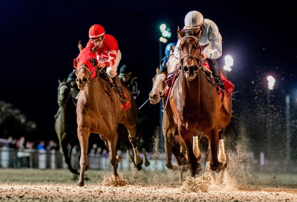 Major Fed, left, finishing second in a division of the Risen Star Stakes Presented by Lamarque Ford at Fair Grounds in February.