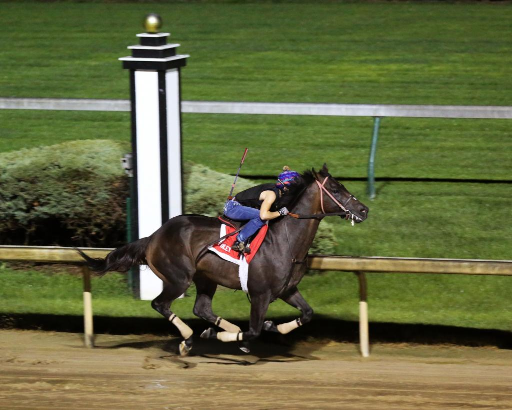 Indiana Derby runner-up Major Fed during morning exercise at Churchill Downs.