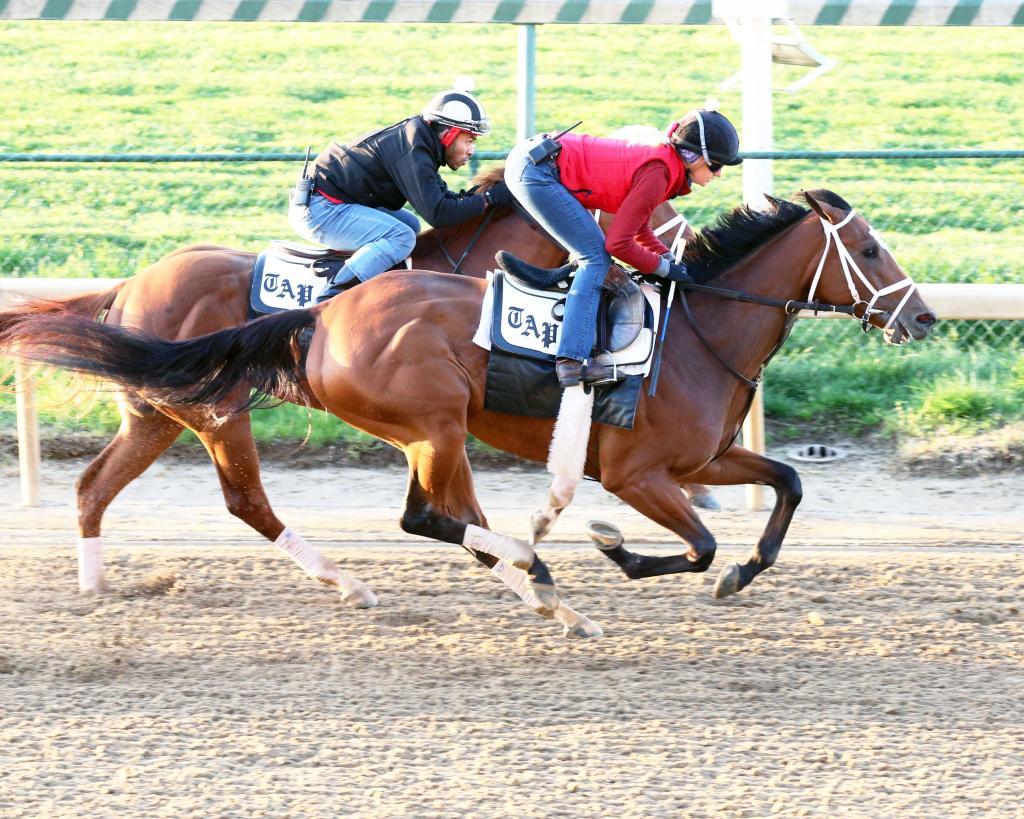 Unbeaten Central Bank Ashland Stakes winner Malathaat. (Coady Photography)