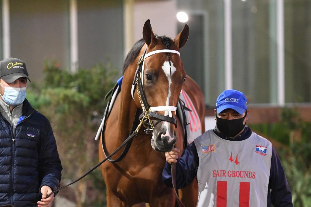 Risen Star Stakes Presented by Lamarque Ford winner Mandaloun.