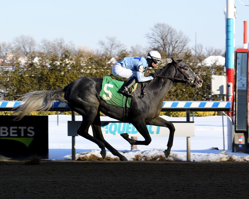 Gazelle Stakes runner-up Maracuja. (Adam Coglianese/NYRA)