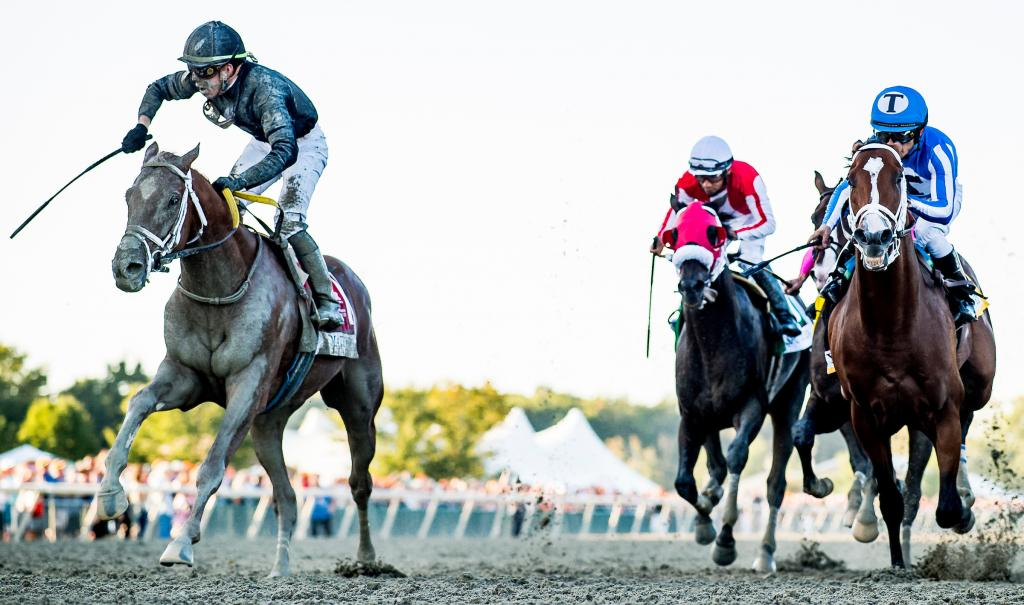 2019 Pennsylvania Derby winner Math Wizard (Eclipse Sportswire)