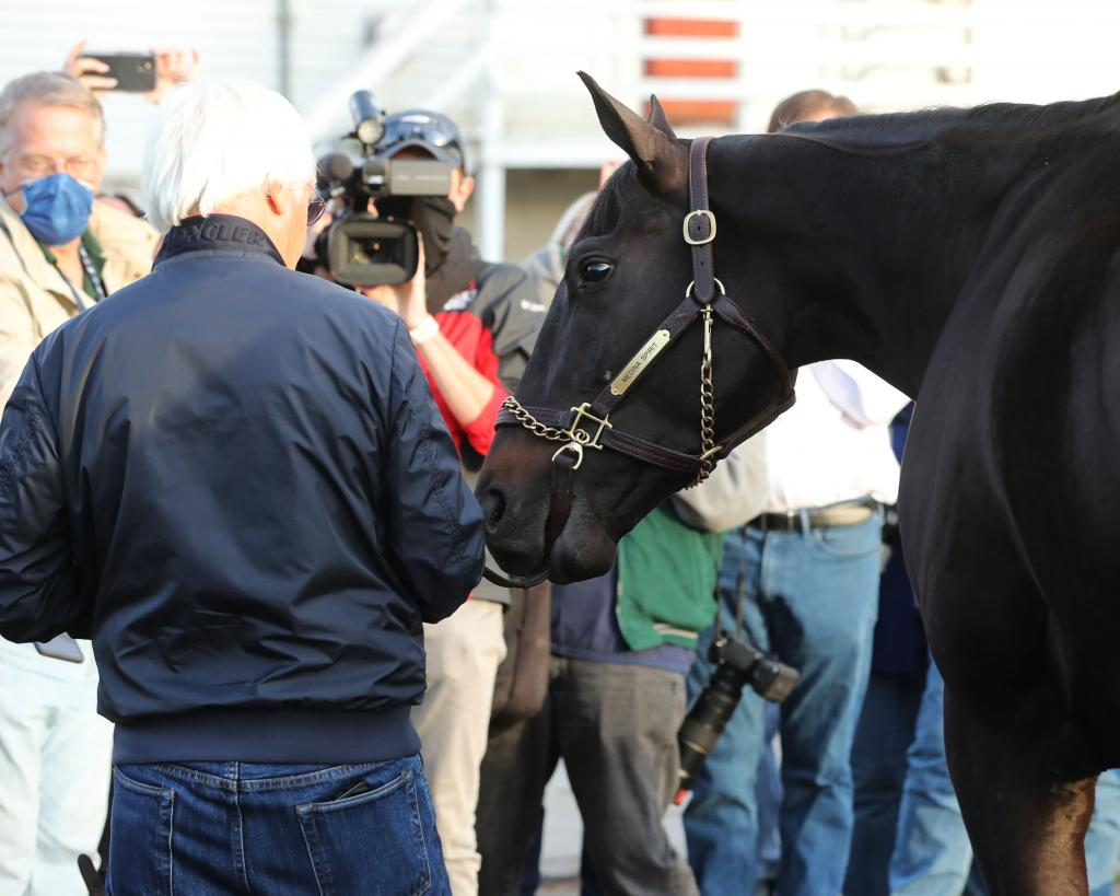 Medina Spirit the morning after his career-defining Kentucky Derby win. (Coady Photography)