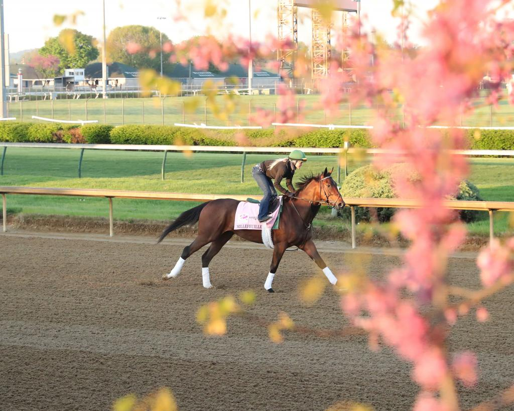 Gulfstream Park Oaks runner-up Millefeuille. (Coady Photography)