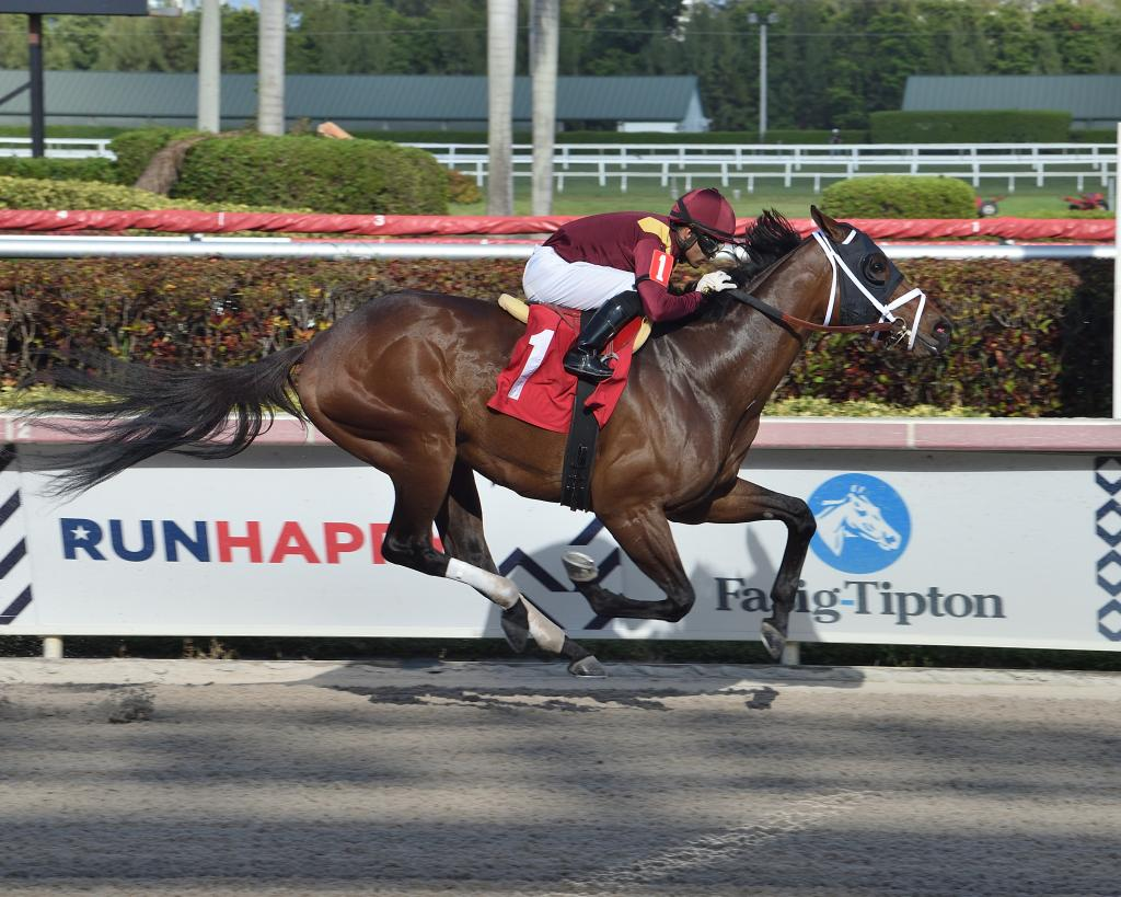 Money Moves winning a race at Gulfstream Park in March.
