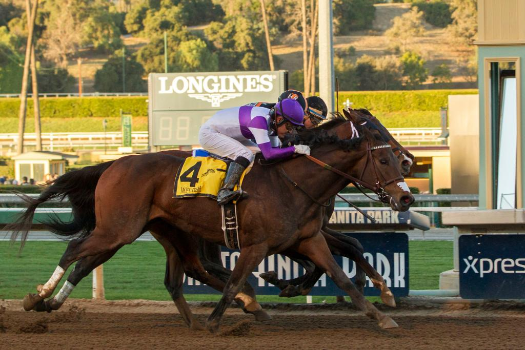 Mopotism winning the Grade 2 La Canada Stakes in January 2018. (Eclipse Sportswire)