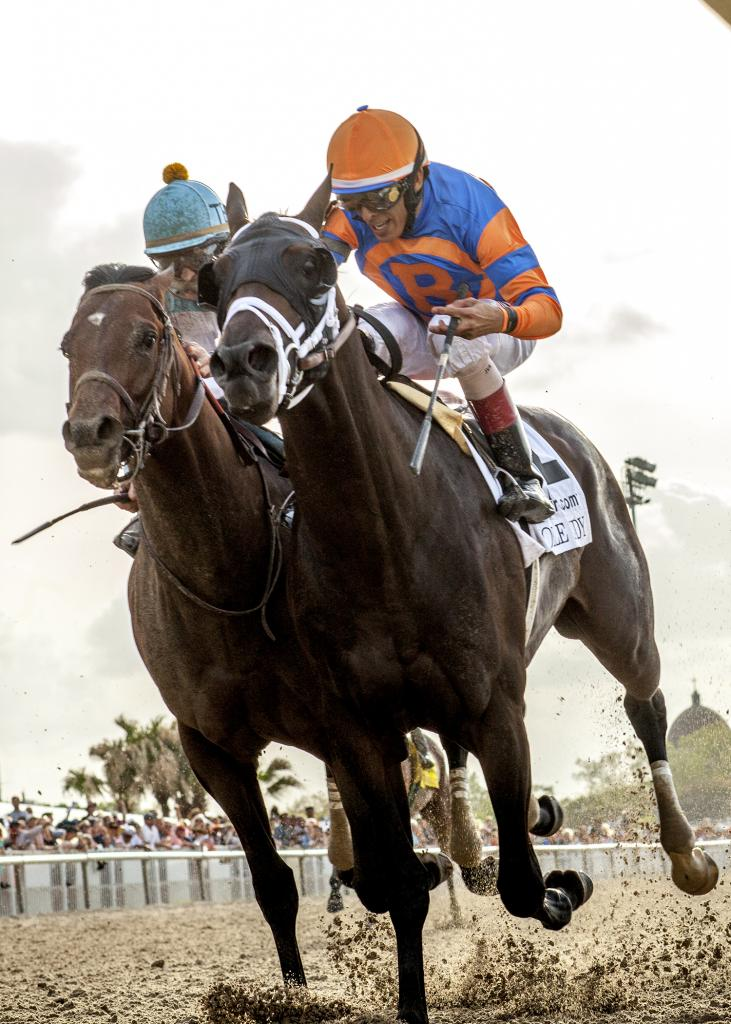 Noble Indy, inside, winning the Louisiana Derby. (Amanda Hodges Weir/Hodges Photography)