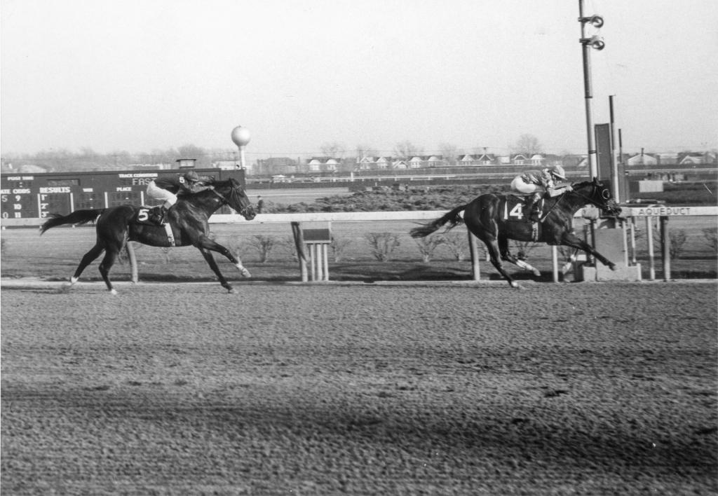 Northern Dancer wins the Remsen Stakes at Aqueduct on Nov. 27, 1963. (Coglianese Photo/Blood-Horse)