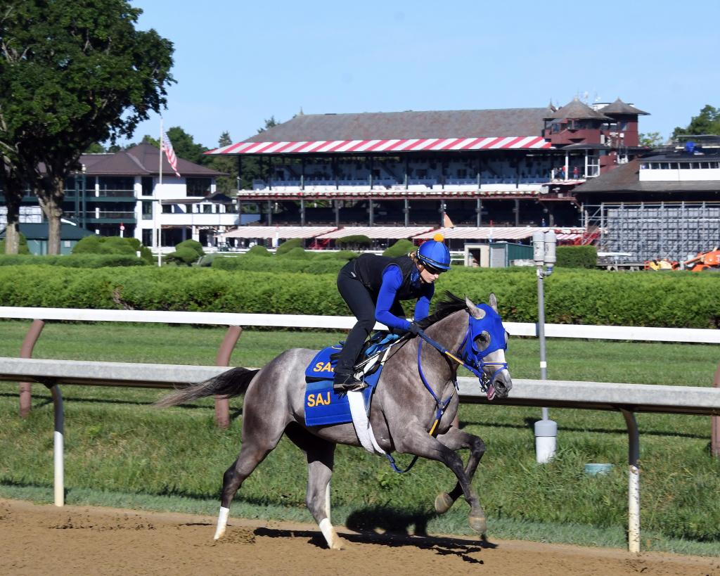 TVG.com Haskell Stakes runner-up Ny Traffic during morning exercise.