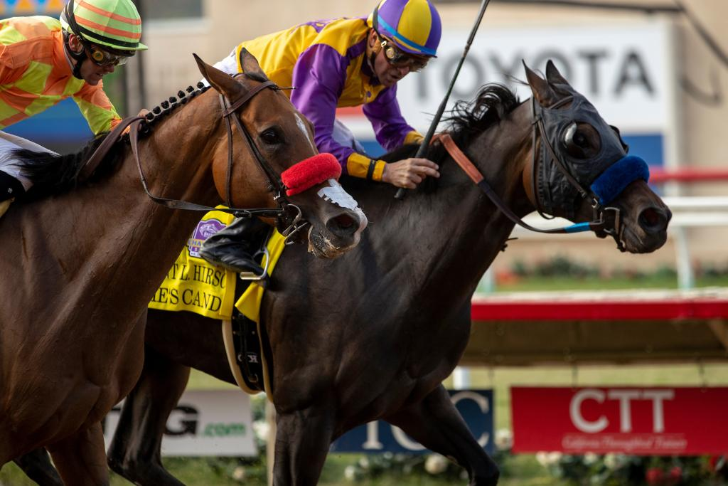 Grade 1 winner Ollie's Candy, runner-up in the Grade 1 Juddmonte Spinster Stakes Oct. 4 at Keeneland. (Eclipse Sportswire)