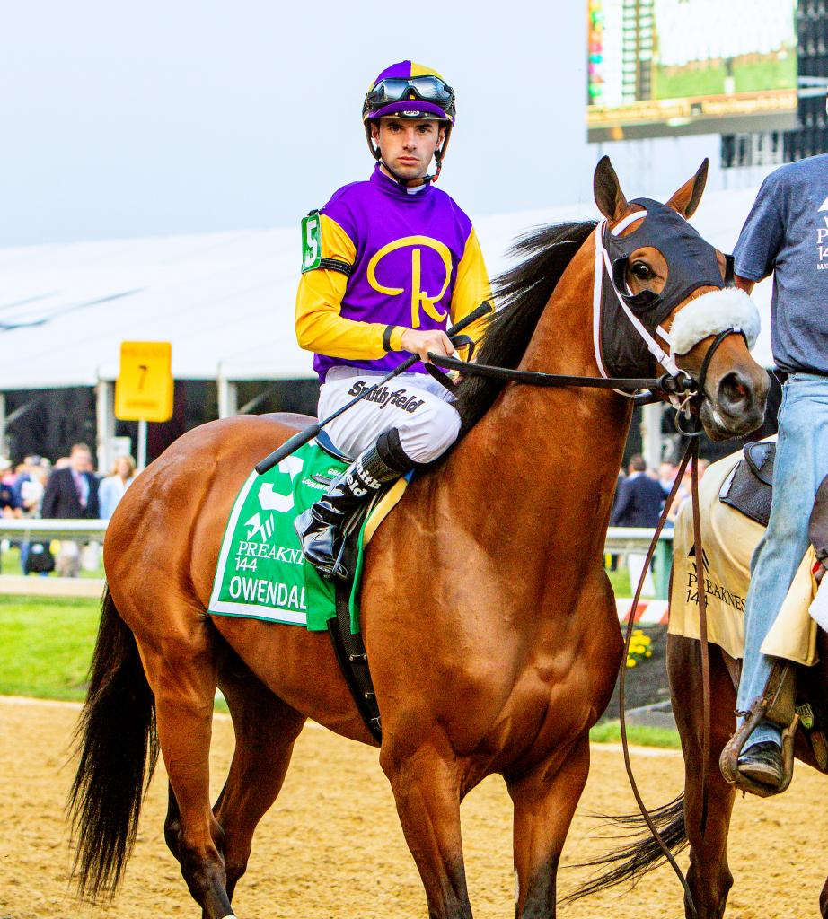 Multiple graded stakes winner Owendale, the Preakness Stakes third-place finisher. (Eclipse Sportswire)