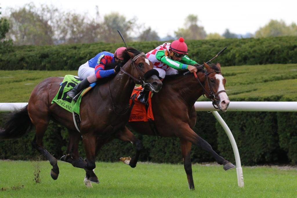 Pico Entry wins the first race of the 2018 fall meet at Keeneland. (Penelope P. Miller/America's Best Racing)