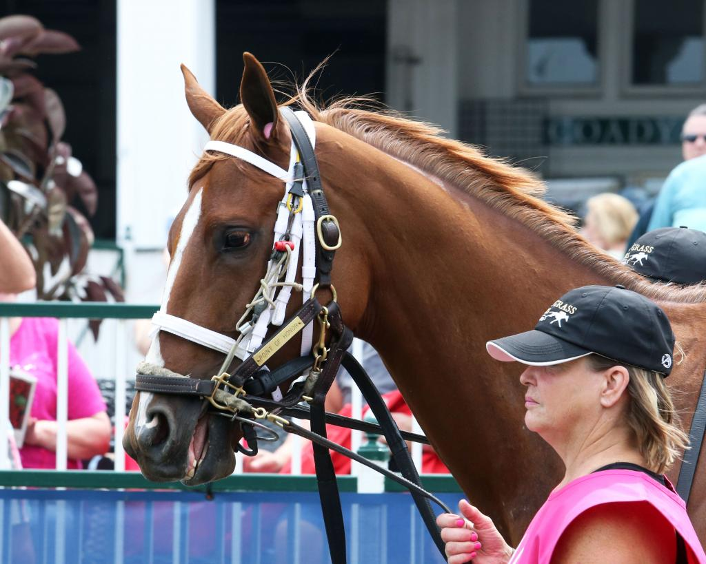 Grade 2 winner Point of Honor, runner-up in the Grade 2 Beldame Stakes Oct. 4 at Belmont Park. (Coady Photography)