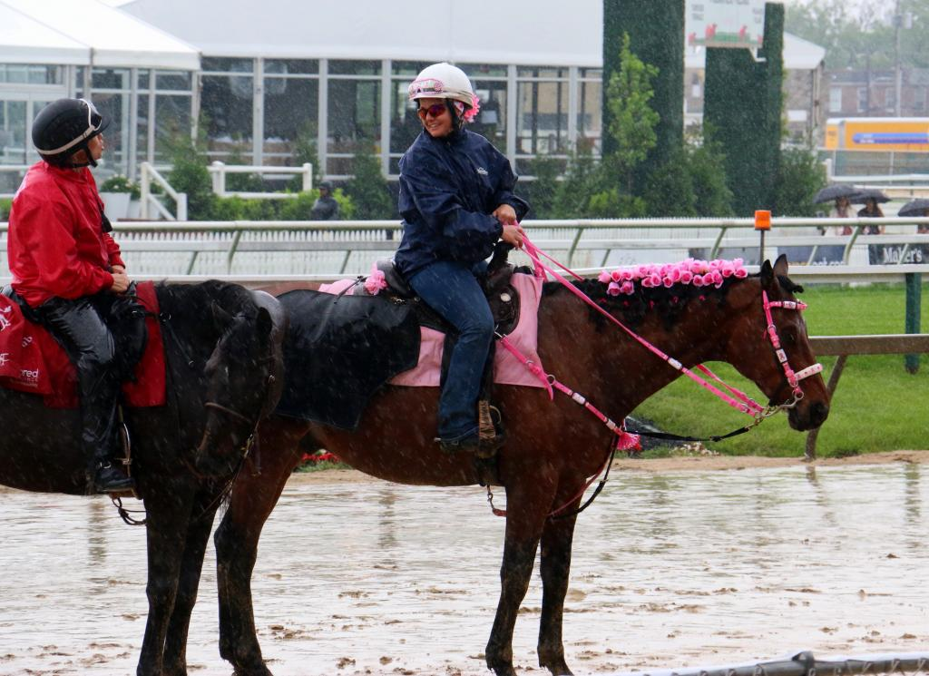 Ponies pretty in pink, even in the pouring rain. (Julie June Stewart photo)