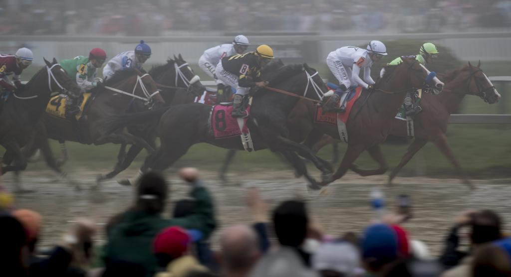 The Preakness field races by the stands after leaving the gate.