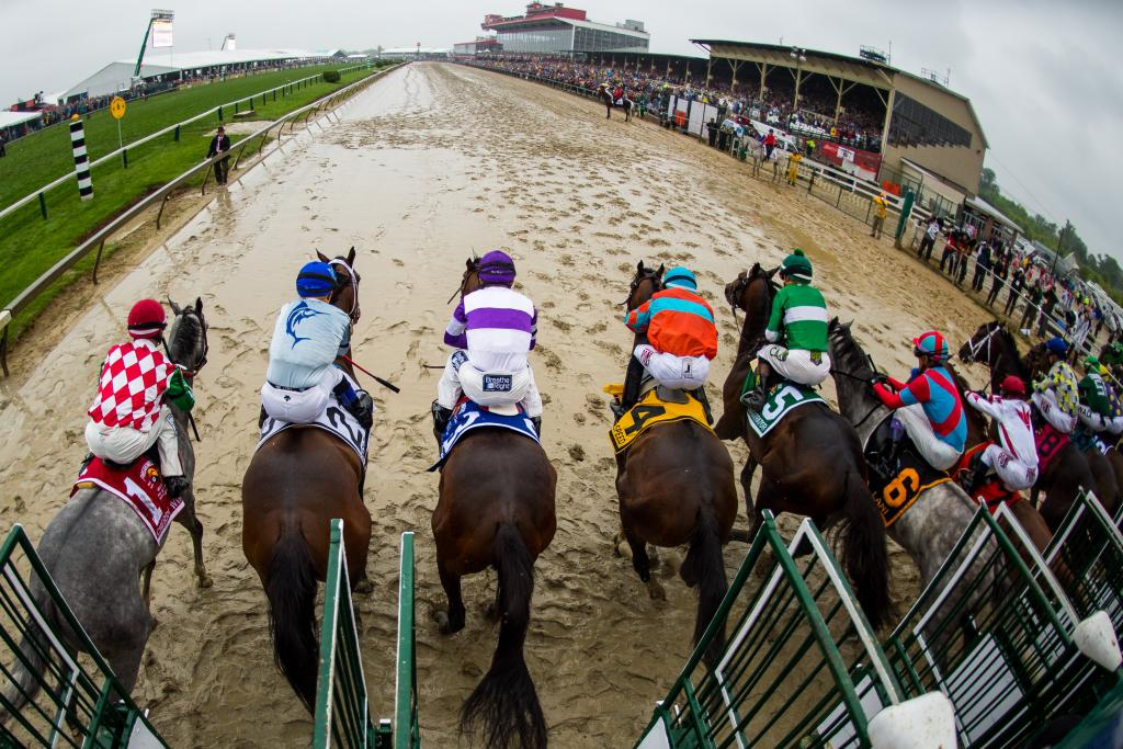 The field leaves the gate for the 141st Preakness Stakes. (Eclipse Sportswire)