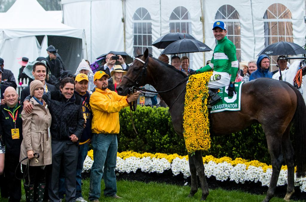 Exaggerator in the Preakness winner's circle. (Eclipse Sportswire)