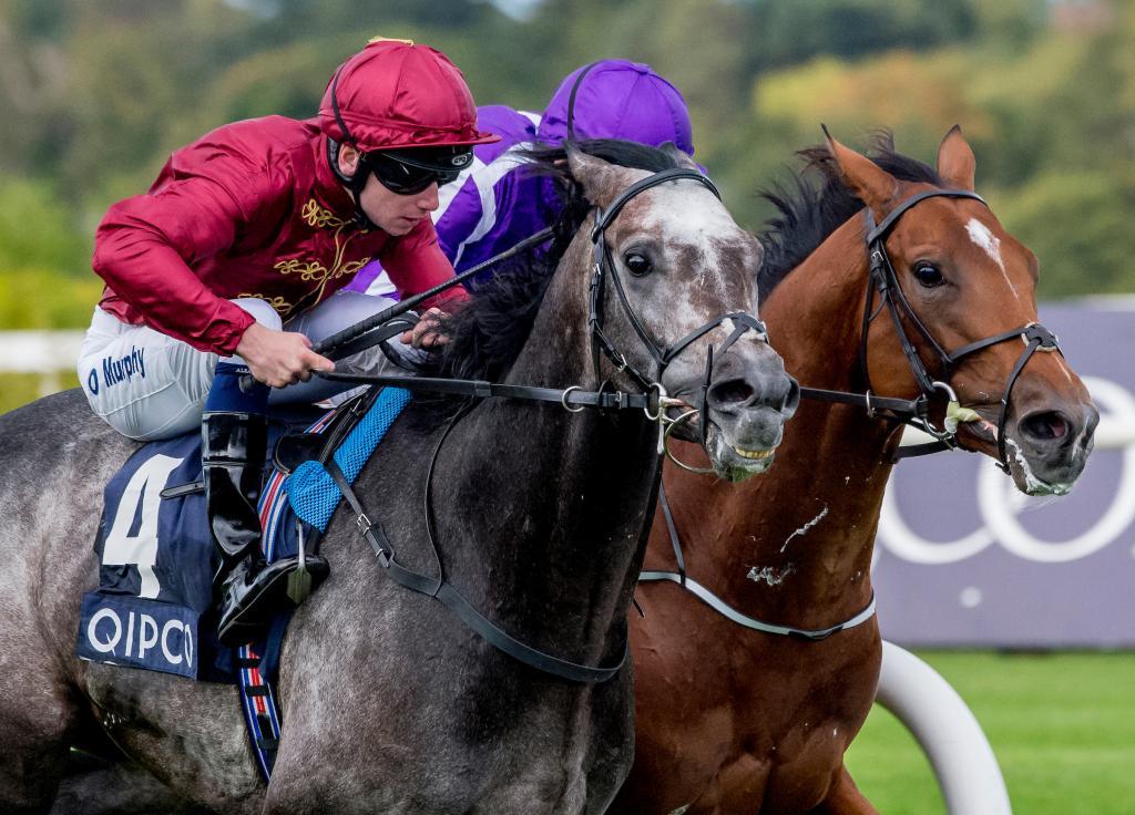Roaring Lion winning the Irish Champion Stakes. (Eclipse Sportswire)