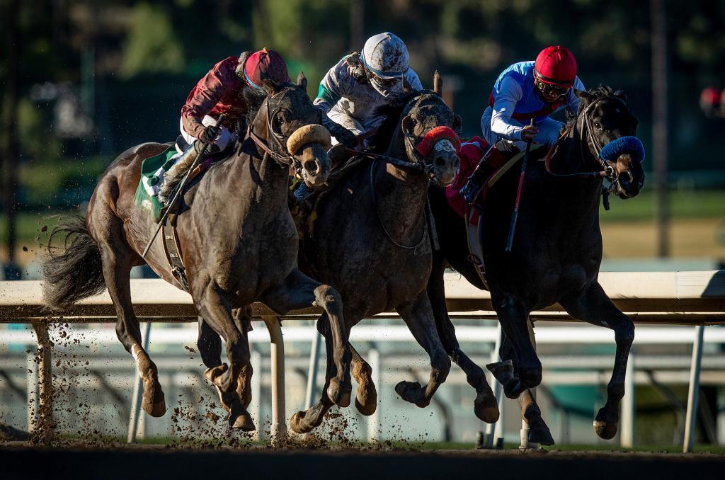 Medina Spirit winning the Robert B. Lewis Stakes in January. (Eclipse Sportswire)