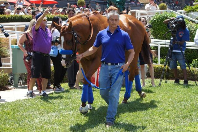 The green grass of the winner's circle. (Cynthia Holt photo)