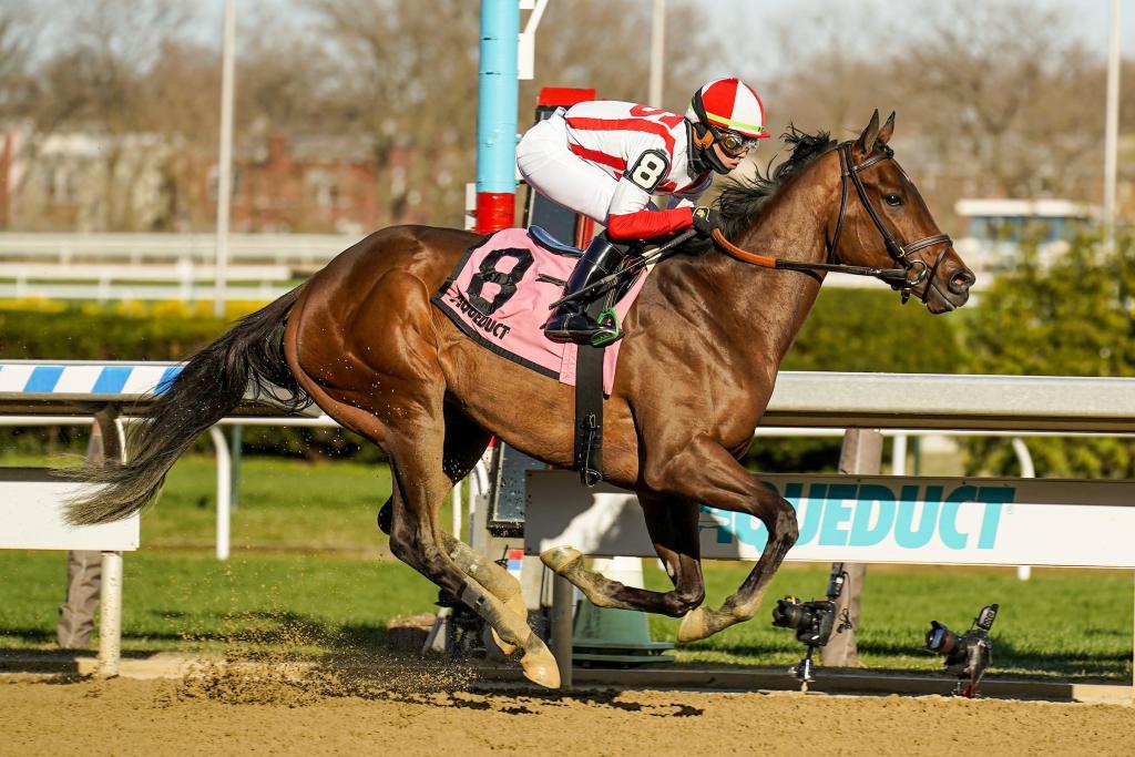 Unbeaten Gazelle Stakes winner Search Results. (Eclipse Sportswire)