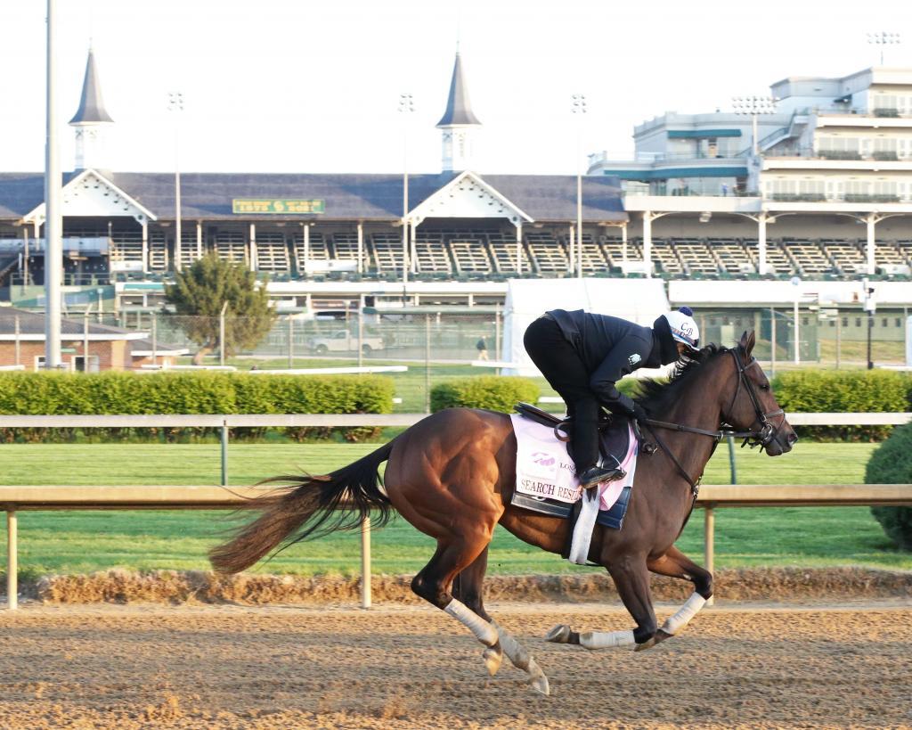 Unbeaten Gazelle Stakes winner Search Results. (Coady Photography)