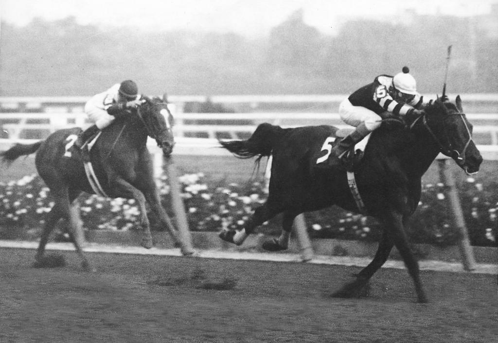 Seattle Slew outfinished Affirmed to win the 1978 Marlboro Cup in a battle of Triple Crown winners. (Bob Coglianese/BloodHorse Library)