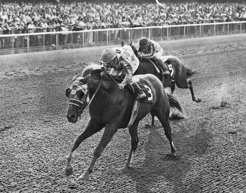 Secretariat wins the Futurity Stakes. (Coglianese Photo/Blood-Horse Library)