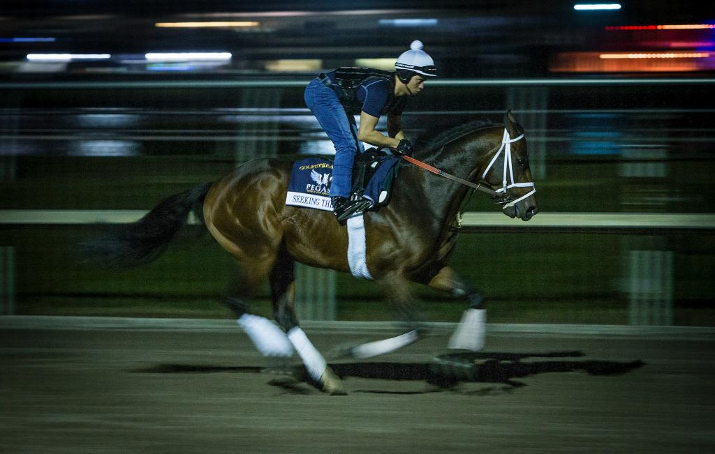 Grade 1 winner Seeking the Soul during morning exercise. (Eclipse Sportswire)