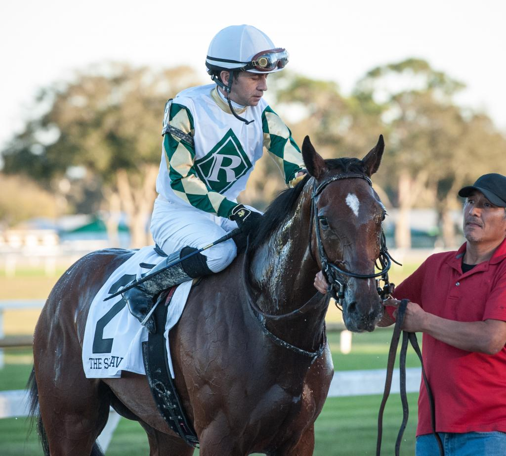 Sole Volante after winning the Grade 3 Sam F. Davis Stakes in February at Tampa Bay Downs.