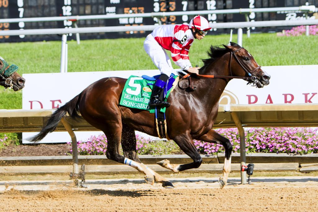 Songbird's Delaware Handicap win. (Eclipse Sportswire)