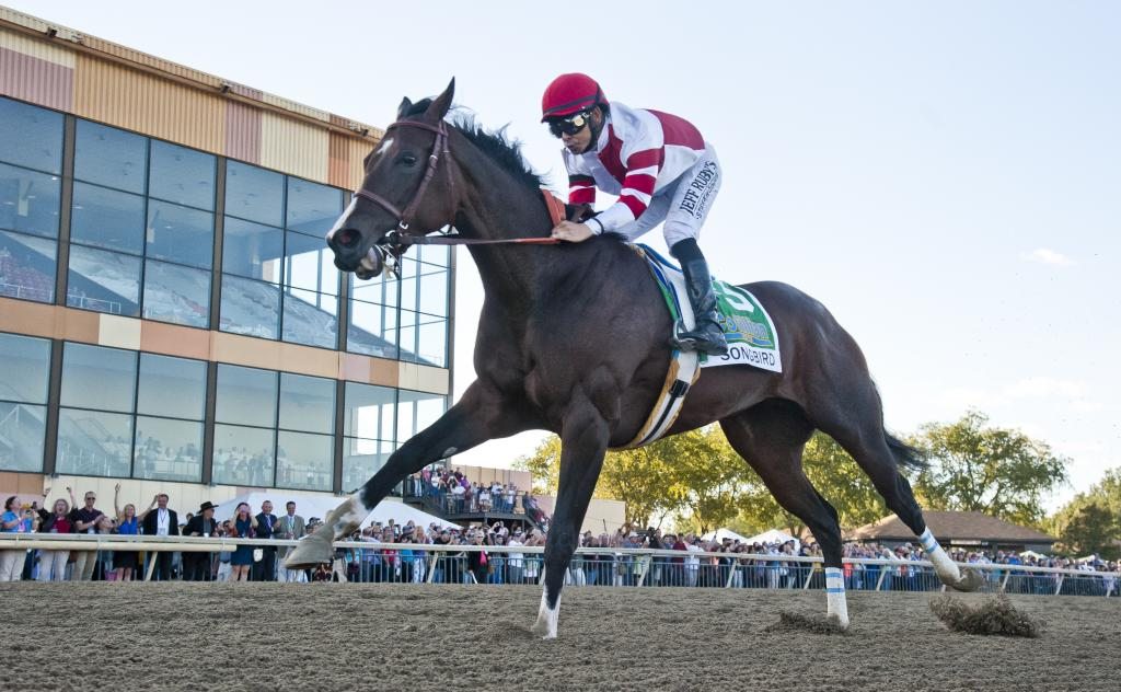 Songbird wins the Cotillion Stakes. (Eclipse Sportswire)
