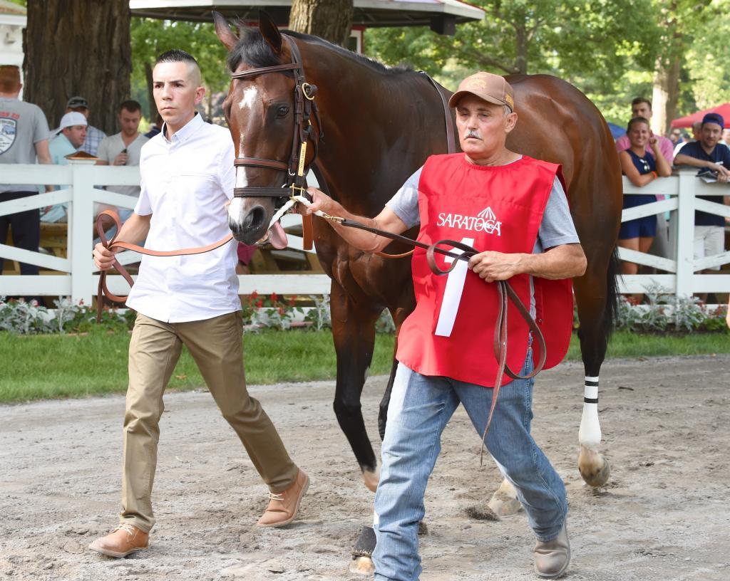 Songbird at Saratoga. (Eclipse Sportswire)