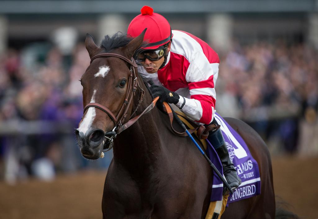 Songbird wins the Breeders' Cup Juvenile Fillies. (Eclipse Sportswire)