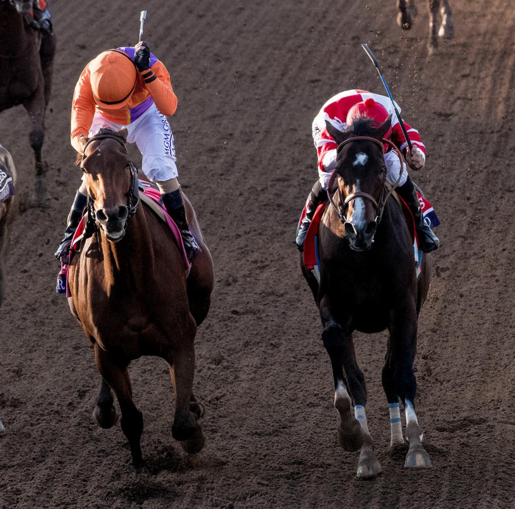 Songbird battles with Beholder in the Breeders' Cup Distaff. (Eclipse Sportswire)