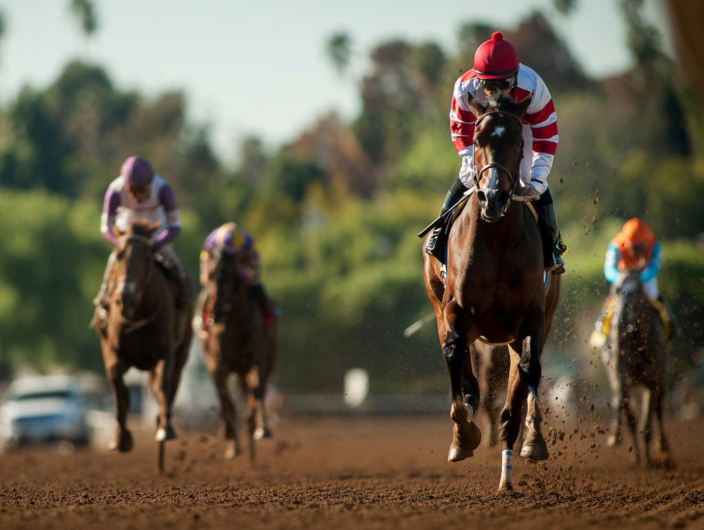 Songbird winning the 2016 Las Virgenes Stakes. (Eclipse Sportswire)