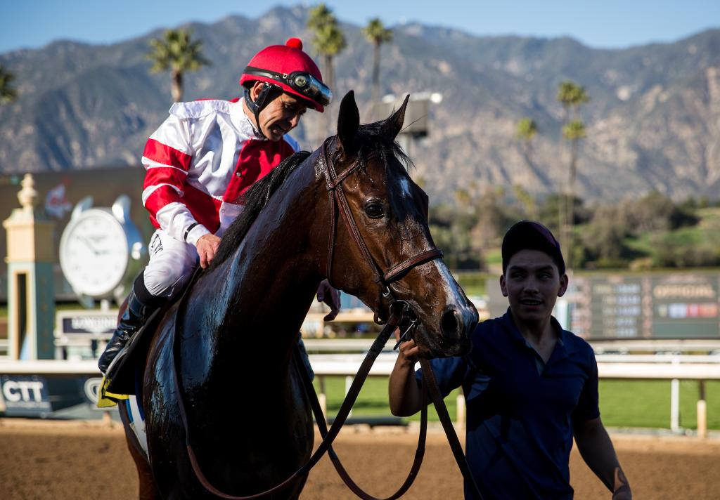 Songbird after winning the 2016 Las Virgenes Stakes. (Eclipse Sportswire)
