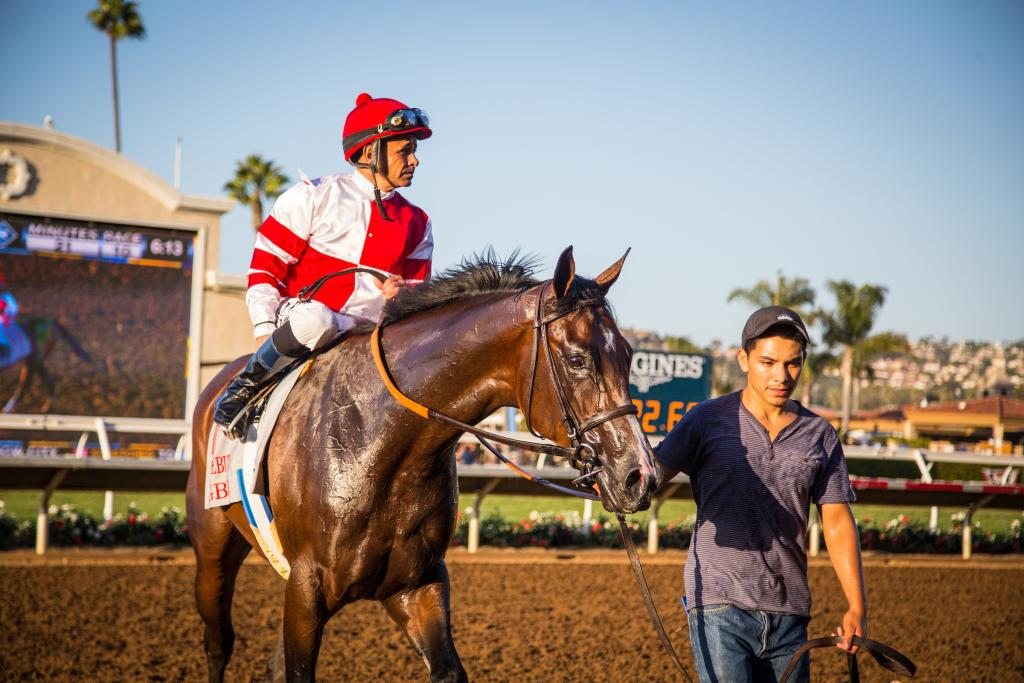 Songbird after winning the Grade 1 Del Mar Debutante in 2015. (Eclipse Sportswire)