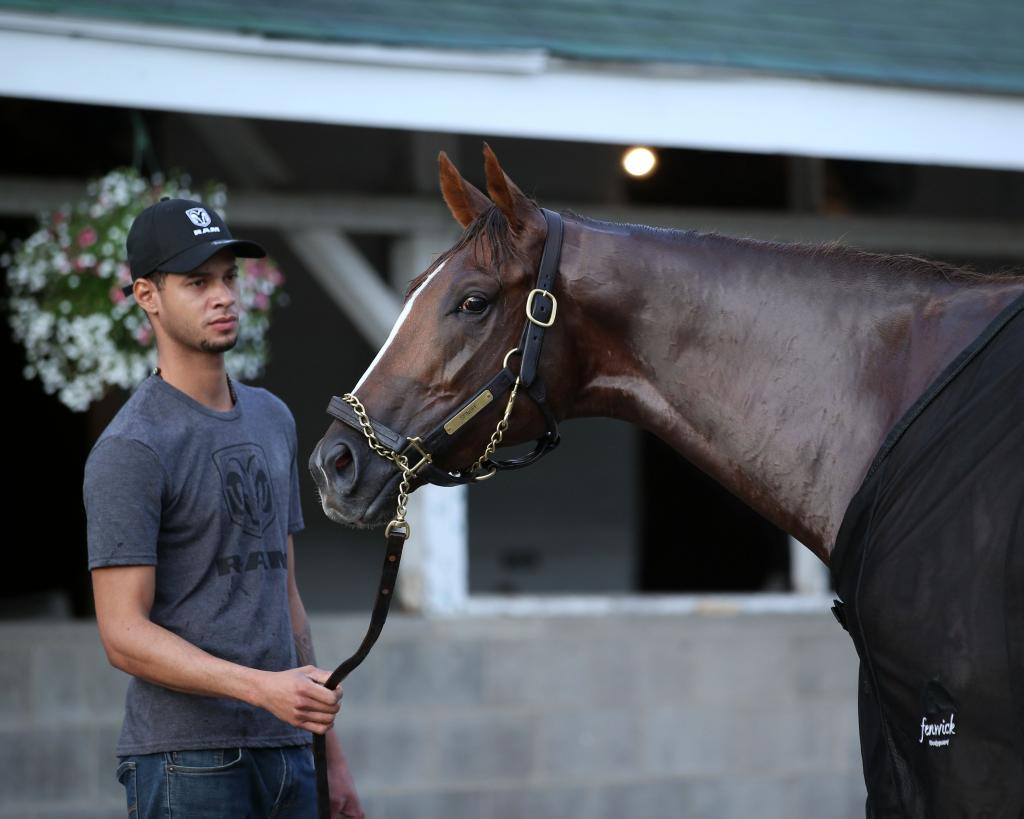 Louisiana Derby runner-up Spinoff. (Coady Photography)
