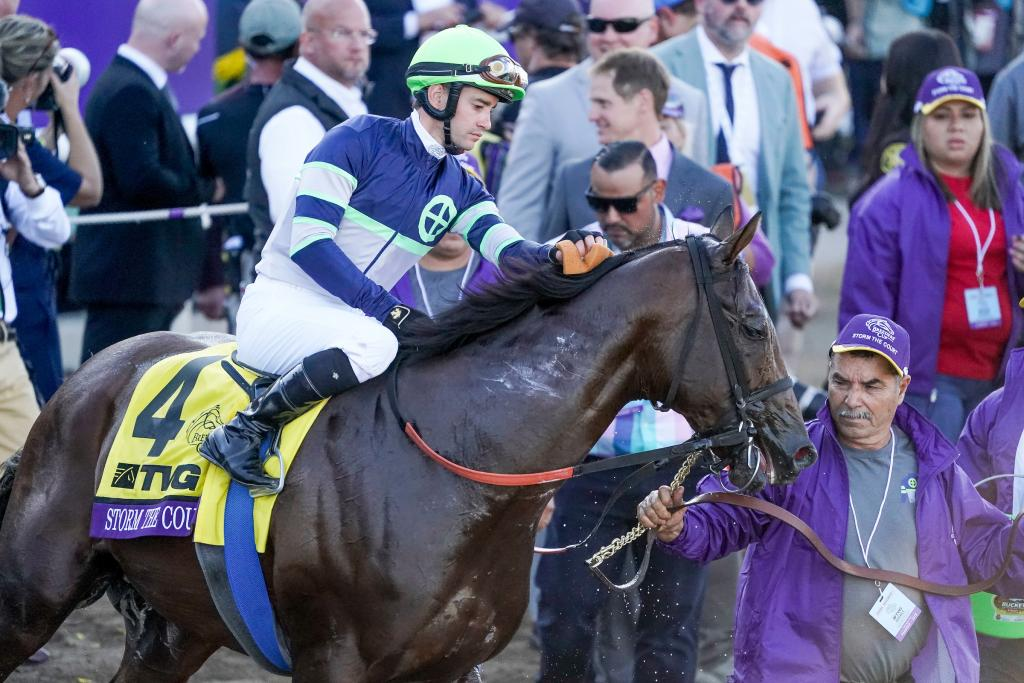 Storm the Court, the champion 2-year-old male of 2019, after winning the TVG Breeders' Cup Juvenile.