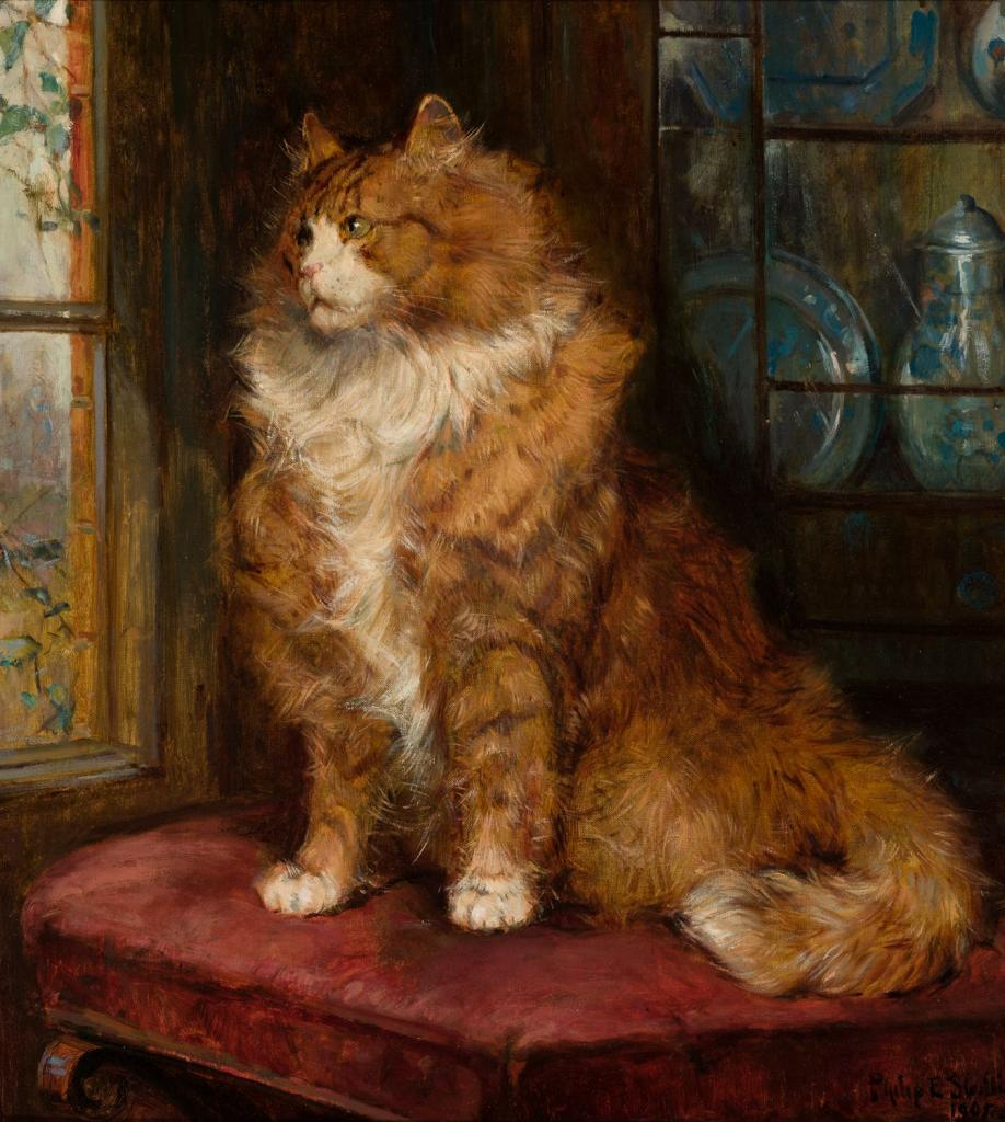 """Study of a Ginger Cat,"" by Philip Eustace Stretton"