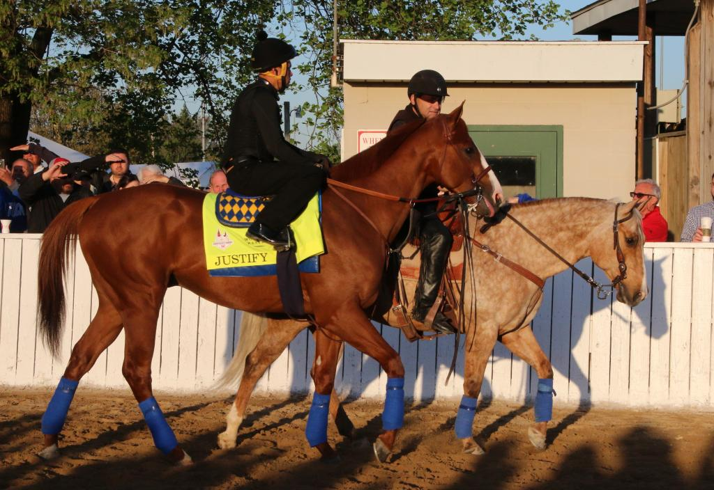 Sunny looks larger with his shadow next to Justify. (Julie June Stewart photo)