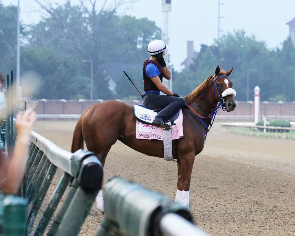 Multiple Grade 1 winner Swiss Skydiver, winner of the Grade 1 Preakness Stakes against males Oct. 3 at Pimlico Race Course. (Coady Photography)