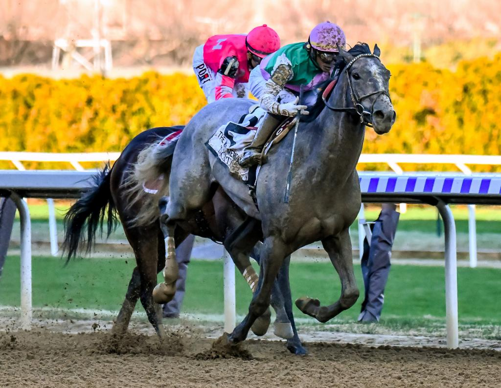 Multiple Grade 2 winner Tacitus winning Wood Memorial Stakes. (Eclipse Sportswire)