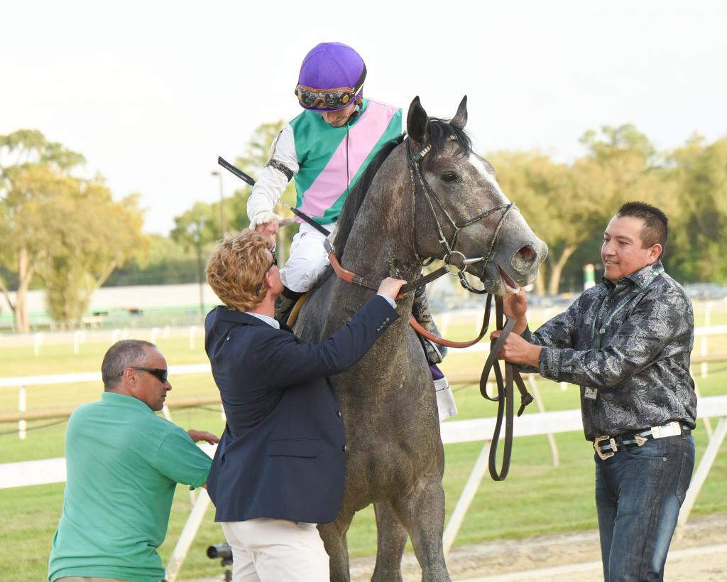 Tampa Bay Derby and Wood Memorial Stakes winner Tacitus. (SV Photography)