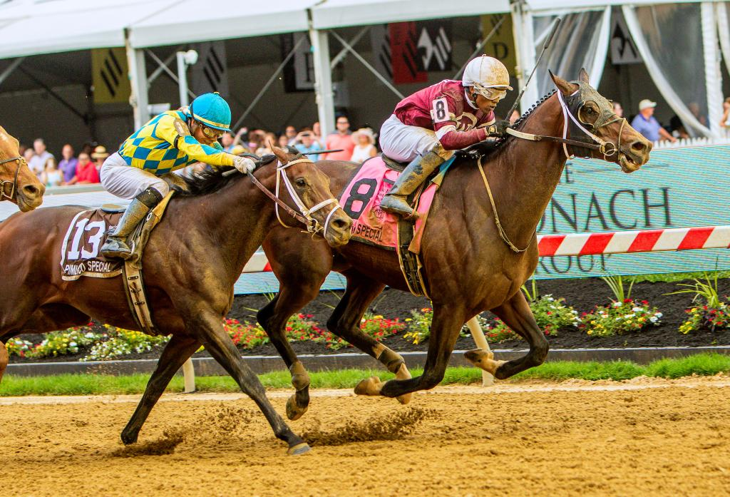 Multiple graded stakes winner Tenfold (Eclipse Sportswire)