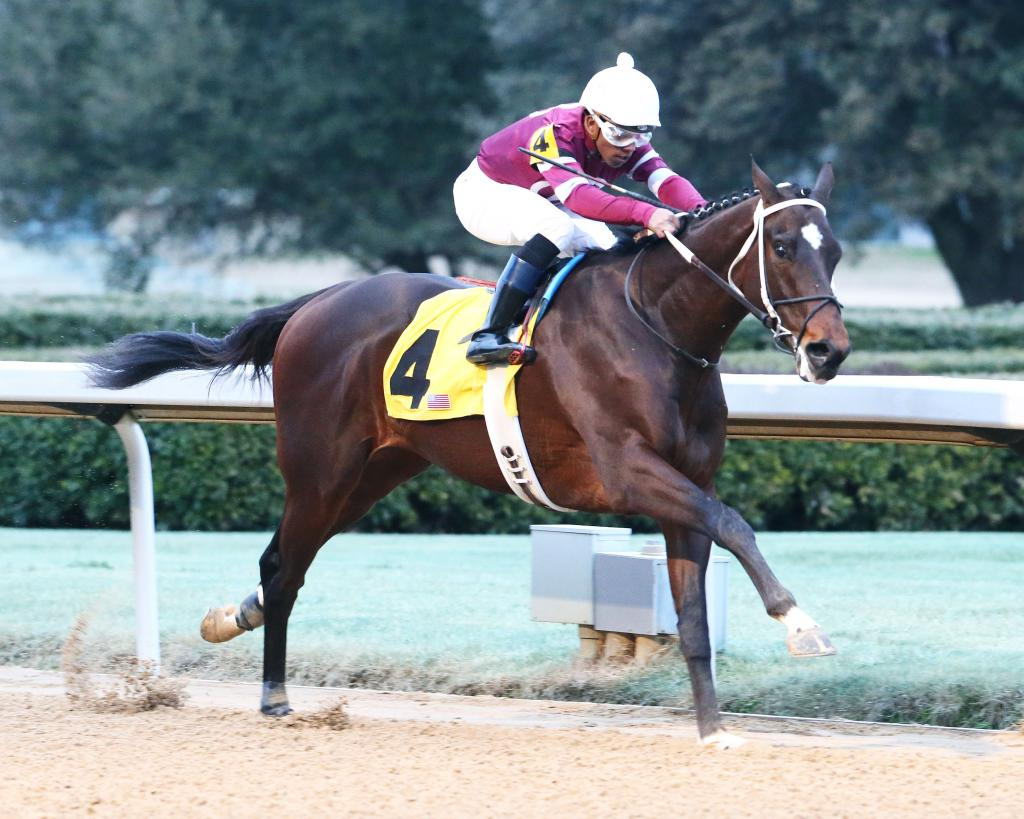 Tenfold winning a maiden special weight race in February at Oaklawn Park. (Coady Photography)
