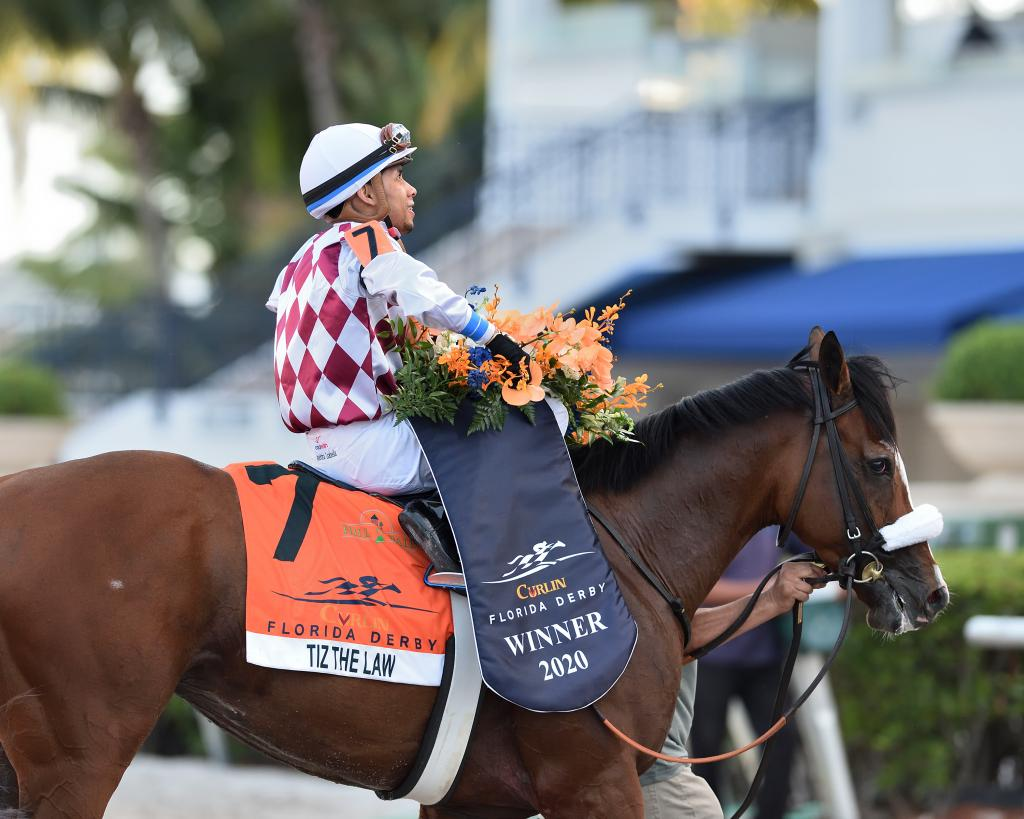 Multiple Grade 1 winner Tiz the Law. (Ryan Thompson/Gulfstream Park)