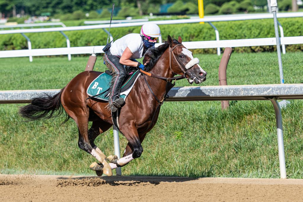 Probable 2020 Kentucky Derby favorite Tiz the Law during a morning workout at Saratoga.