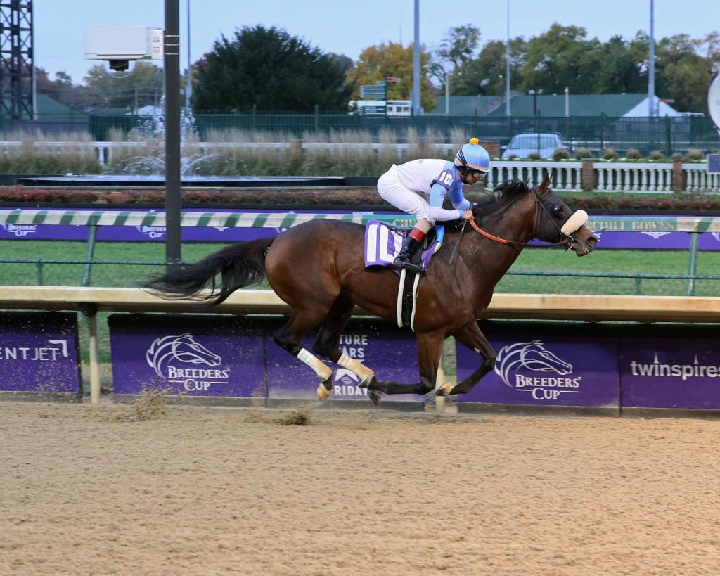 Tom's d'Etat winning an allowance race at Churchill Downs. (Coady Photography)